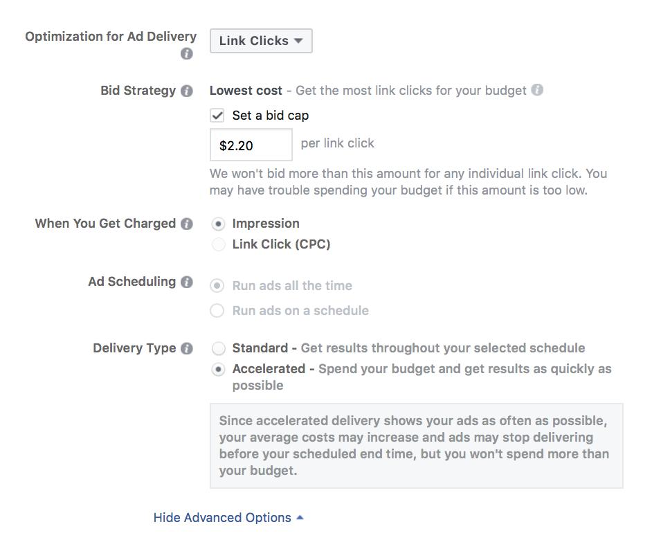 Facebook手动竞标终极指南